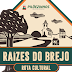 Raízes do Brejo - Rota Cultural em Pilõezinhos de 24 a 26 de novembro/2017.