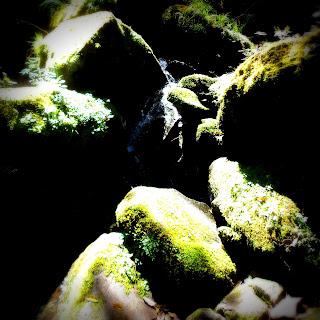 Pedras em Meio à Trilha das Gêmeas Gigantes, Parque das 8 Cachoeiras, São Francisco de Paula