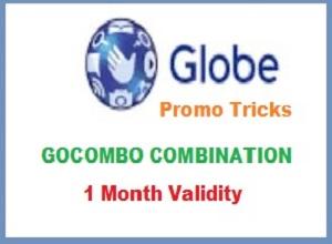 Globe Internet Promo 1 Month Validity