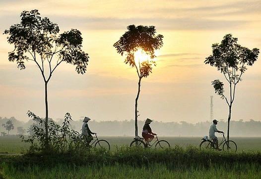 kerja naik sepeda lebih hemat dan sehat