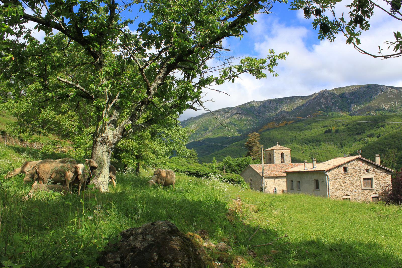 Ardèche - la Ferme du Château de Chastanet