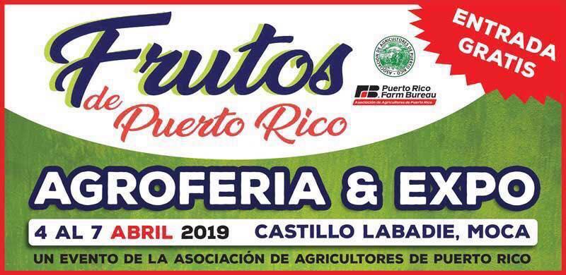 CUPONES AMAZON MARZO 2019