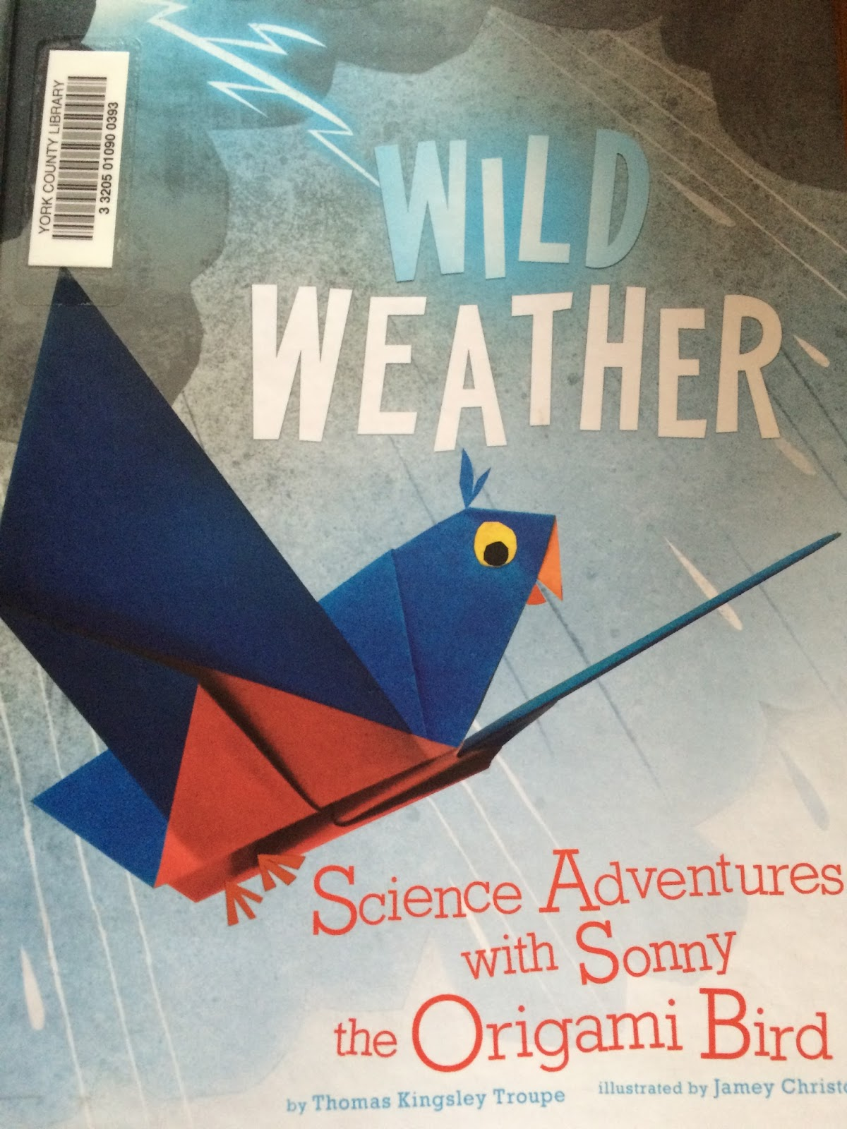 It Was A For Fun Book Wild Weather Science Adventures With Sonny The Origami Bird Little Below Their Grade