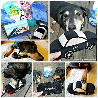 Puptown Girl dog mom subscription box rescue adopt