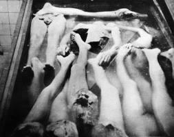 Munca lui Mengele....