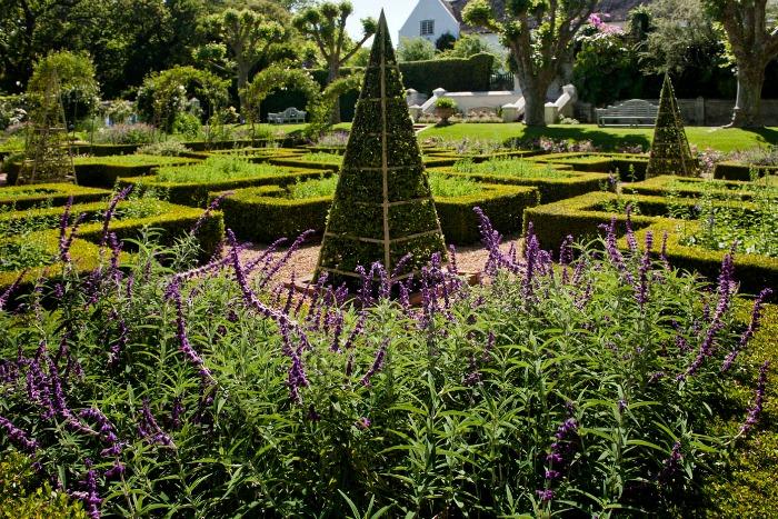 Stellenberg Gardens, salvias y obeliscos