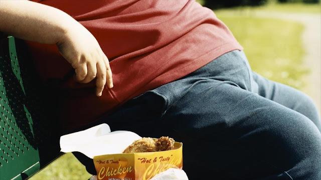 Científicos españoles desarrollan mecanismo para frenar obesidad