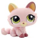 Littlest Pet Shop 3-pack Scenery Kitten (#1489) Pet