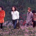 The Doors Songs Soul Kitchen Lyrics Songs Lyrics And Yt