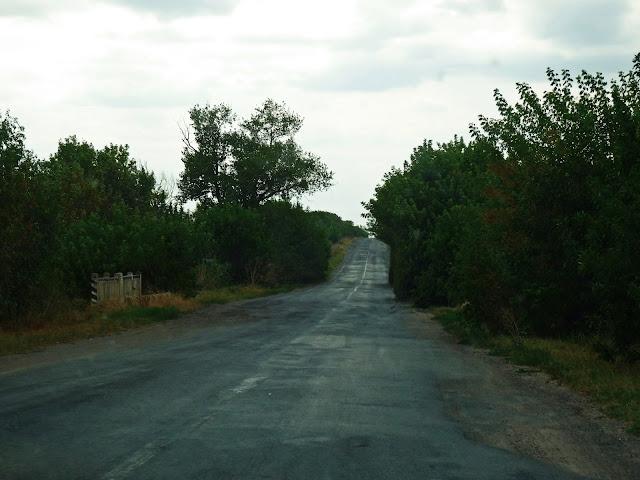 Droga Odessa-Reni (okolice Tatarbunarów)