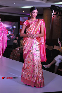 South Indian Celebrities Pos at Love For Handloom Collection Fashion Show  0125.jpg