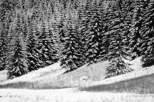 Tatrzański rytm. Zimowa fotografia krajobrazu. Zakopane. Polska. fot. Łukasz Cyrus