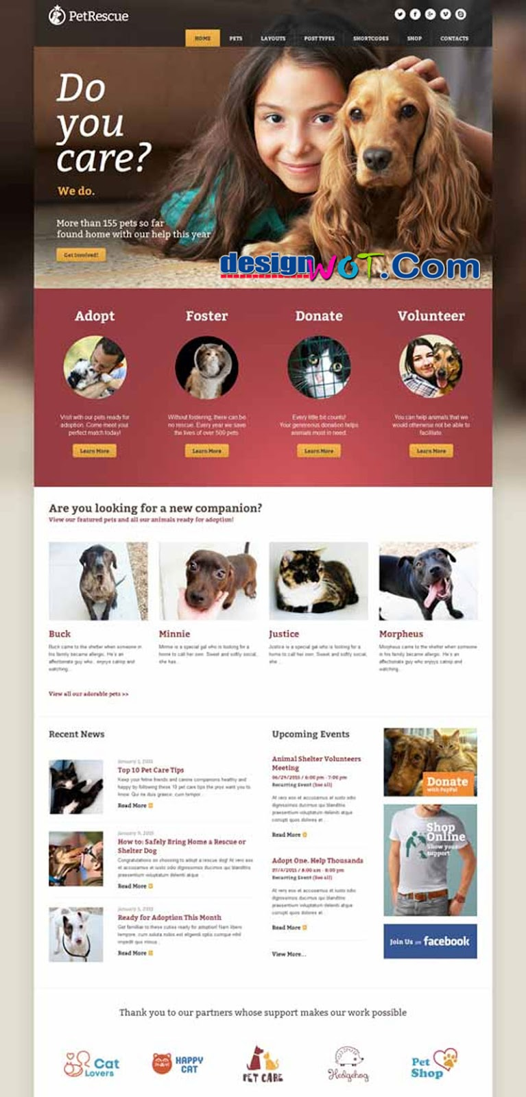 Pet Rescue - Animals & Shelter Charity WP Theme