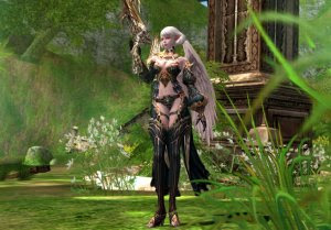 Lineage 2 F2P MMORPG