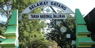 cara ke taman nasional baluran dengan transportasi umum