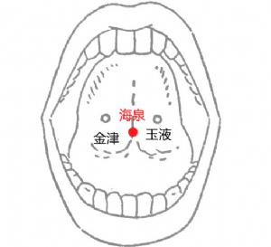 海泉穴位 | 海泉穴痛位置 - 穴道按摩經絡圖解 | Source:big5.wiki8.com