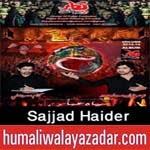 http://audionohay.blogspot.com/2014/10/sajjad-haider-india-nohay-2015.html