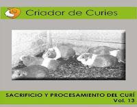 criador-de-curies-13-sacrificio-y-procesamiento-del-curí