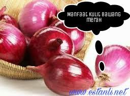 Manfaat dan khasiat kulit bawang merah