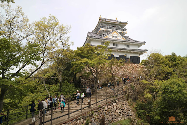 5 Things I Like about Gifu Castle