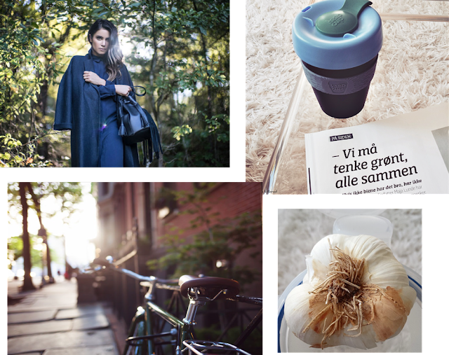 The Monthly Telegraph - new vegan bag collection, organic garlic, ranking of the greenest cities and KeepCup.