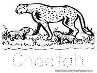 animal coloring pages cheetah