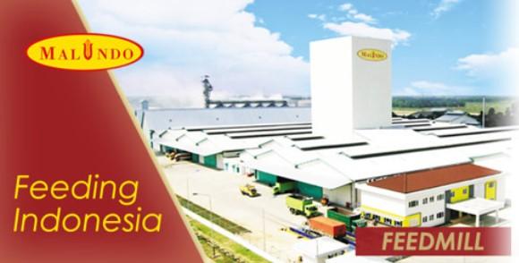 Lowongan Kerja Staf Teknik di PT Malindo Feedmill Rembang