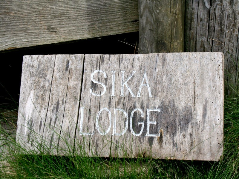 sika lodge: dorset - part one - Oh Wild