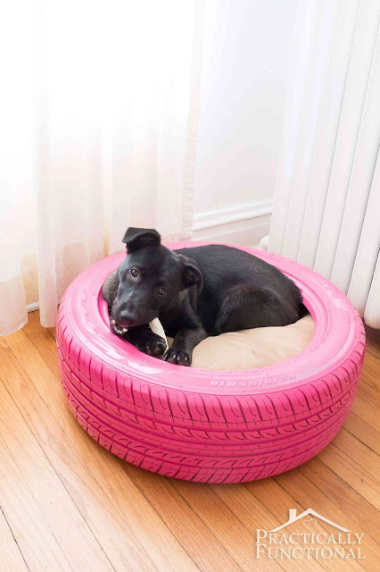 bed dog tire
