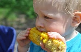 a healthy child eating maize