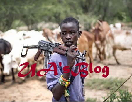 JUST IN: Herdsmen attack Enugu community, machete security guard