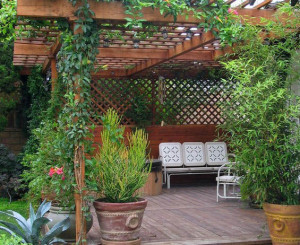 Untuk bahan desain taman atau teralis baik yang menggunakan material bambu Pilihan Material, Teralis Dan Jenis Tanaman