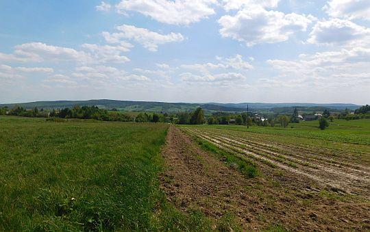 Z prawej przebłyskują pola i łąki, a za nimi domy.