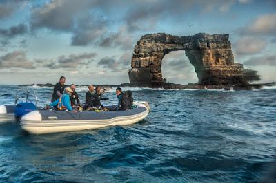 Majestic Explorer Zodiac - Darwin Island