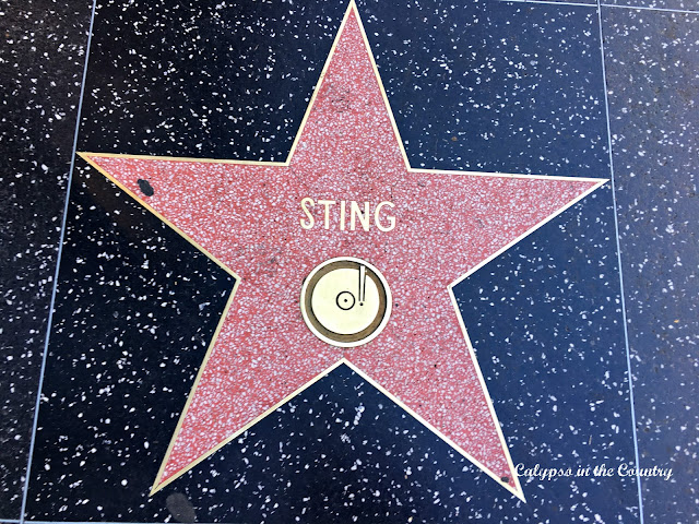 Sting's star on the Hollywood Walk of Fame
