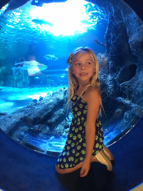 Little girl sitting next to Aquarium with shark