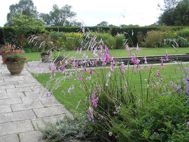 kamienna ścieżka, donice w ogrodzie, formalny staw, dierama
