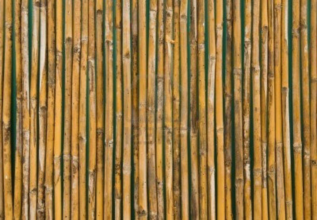 Neo Arquitecturaymas Decorar Con Bamb 250