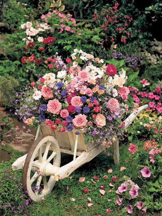 Conhecido Blog Multi Vaso: Flores o Ano Todo - Parte 2 CF67
