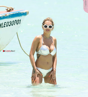 Rita Ora in Silver Bikini 7 ~ Celebs.in Exclusive Celebrities Picture Galleries