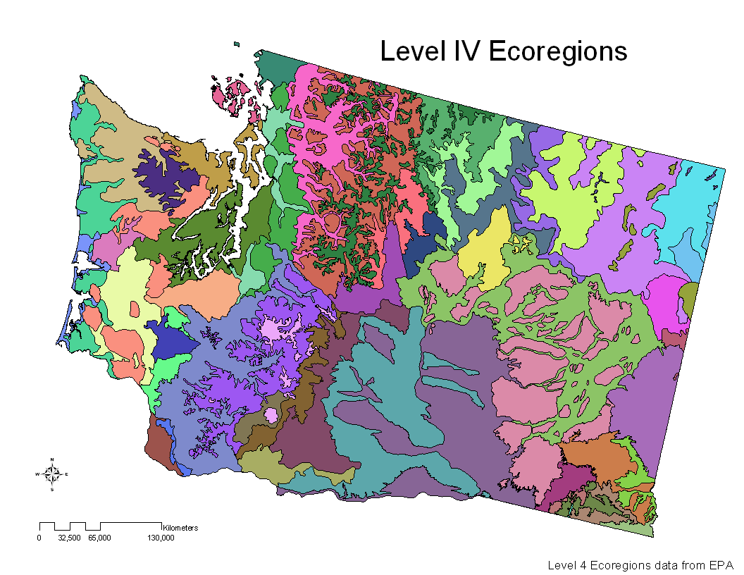 Conglomerate Thoughts: Biomes Vs. Ecoregions (a Journey Of
