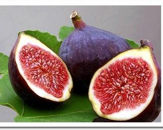 Menjadi Nama Surah dalam Al quran, Inilah 7 manfaat buah tin