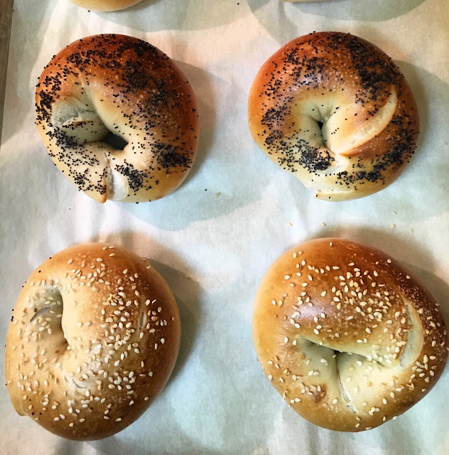 Assorted Varieties of Freshly Baked Bagels
