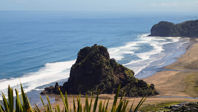 View over Piha beach on a day trip from Devonport Auckland
