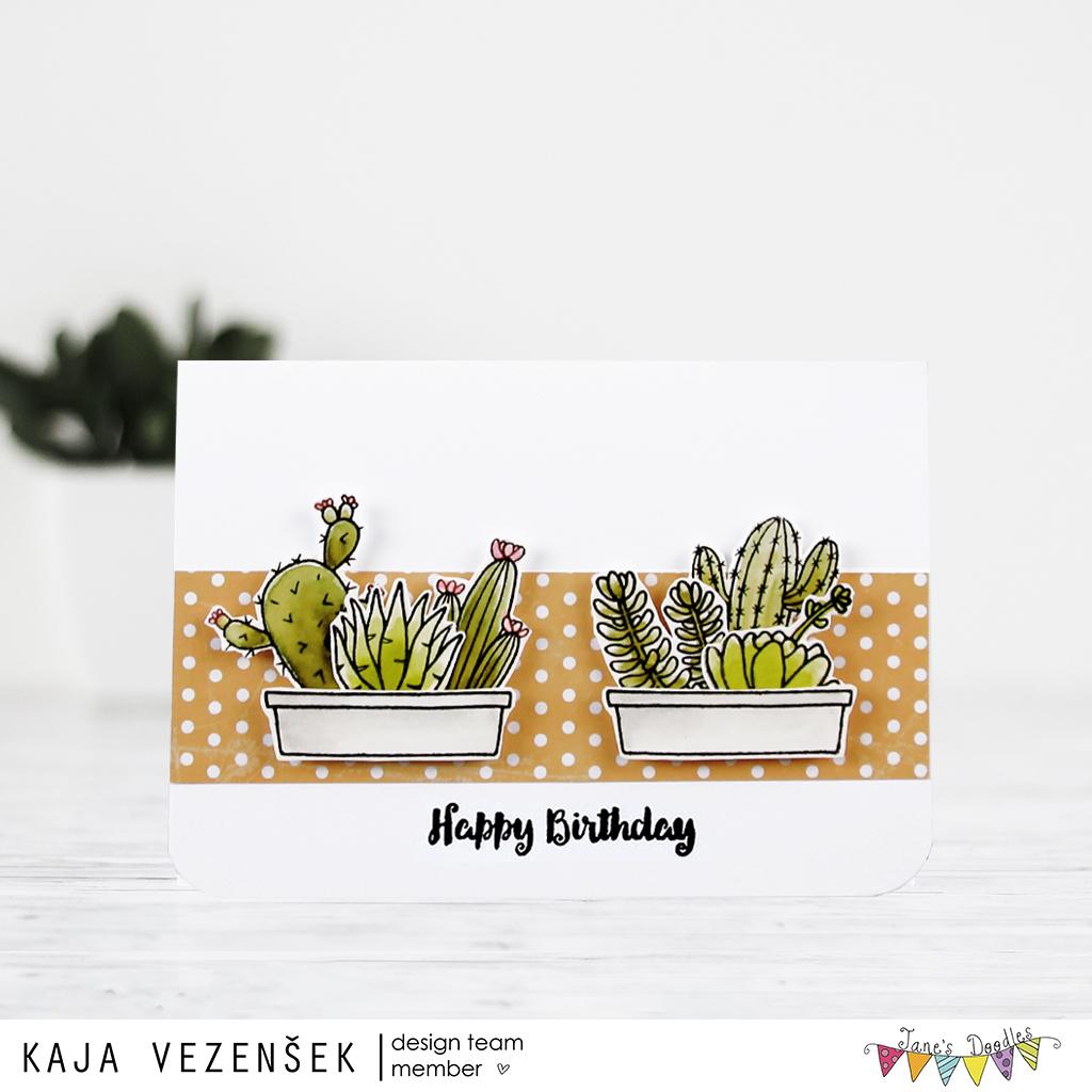 Cacti | JANE'S DOODLES