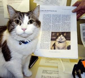 Oscar chú mèo tiên tri hay tử thần?