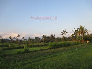 Air Terjun Tangkub (Slau) Bangli