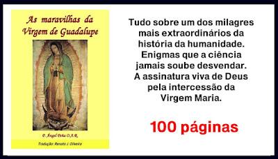 https://www.clubedeautores.com.br/ptbr/book/240249--As_maravilhas_da_Virgem_de_Guadalupe
