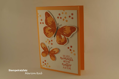 Watercolor Wings mit Stampin´ Up!