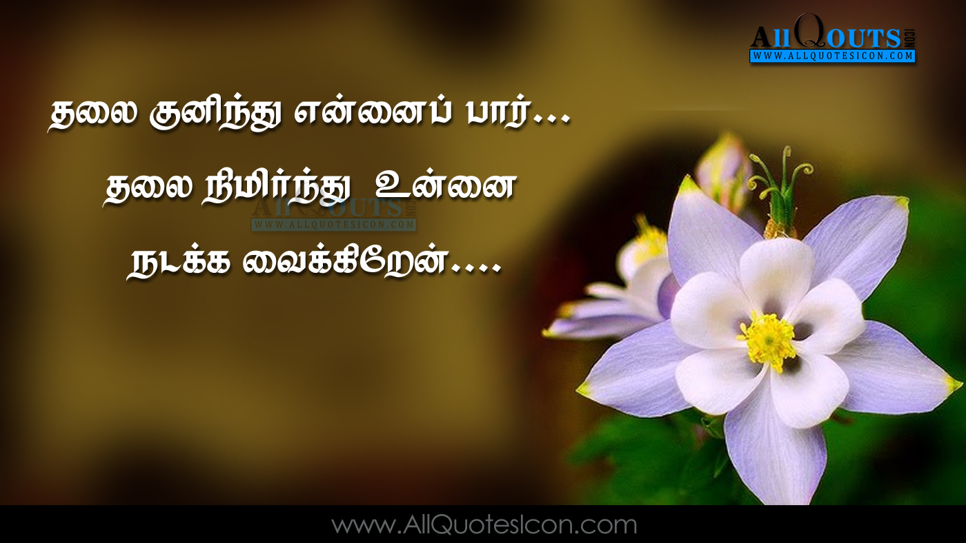 Quran Quotes In Tamil Pictures Best Islamic Sayings Tamil Quotations